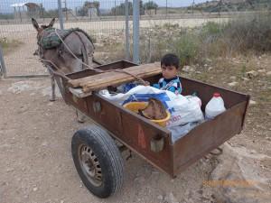 Dieser Junge begleitet seine Eltern auf das Farmland der Familie