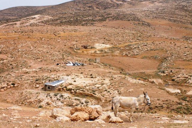 Massafer Yatta: Schönheit und Kargheit der Landschaft kurz vor der Wüste Negev. Auch hier im Hintergrund ein abgerissenes Gebäude.