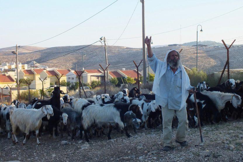 Im Vordergrund der palästinensische Ort Um Al Kheir, im Hintergrund die israelische Siedlung Karmel. Hier leben Beduinen und israelische Siedler nur durch zwei Zäune und einen knappen Landstreifen dazwischen getrennt. Immer wieder kommt es zu Konflikten.
