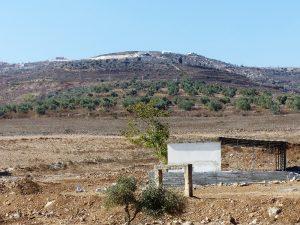 Geplanter Schafstall, die Siedlungen im Hintergrund; © EAPPI