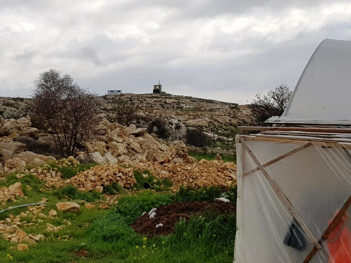 Abu Ahmads Gewächshaus, auf dem Hügel der Außenposten Givat Eitam; Foto © EAPPI