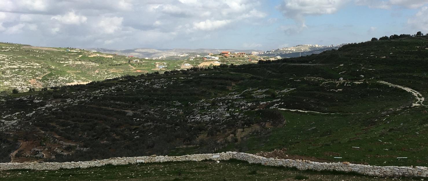 Blick von Farata auf den Außenposten Havat Gilad (rote Dächer). Der Hügel mit Olivenhainen im Vordergrund darf derzeit von den Einwohnern Faratas nicht ohne weiteres betreten werden. Ibrahims Olivenhain befindet sich auf der dem Außenposten zugewandten Seite des Hügels ©EAPPI