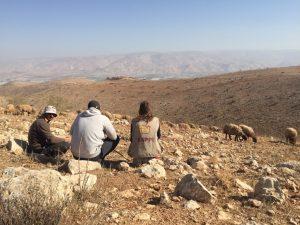 Begleitung der Schäfer, auf dem gegenüberliegenden Hügel ist der Siedlungsaußenposten zu erkennen. ©EAPPI