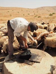 Ein palästinensischer Hirte schöpft Wasser für seine Tiere aus einem kleinen Brunnen; Foto @EAPPI