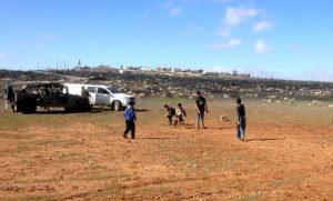 Land Action in Um al Arais, im Hintergrund der Außenposten Mitzpe Yair