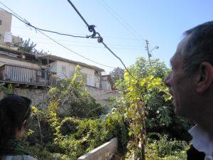 Hashem schaut 2013 von seinem Garten auf Baruch Marzels Haus, © EAPPI