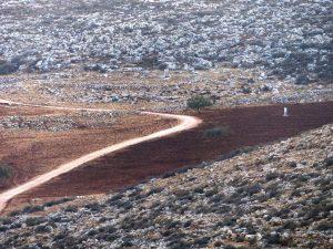 Der dunkle Boden auf Rasheds Land zeugt von der kürzlichen Bearbeitung; ©EAPPI