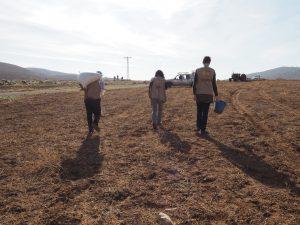 Zusammen mit Rashed säen wir Weizen auf einem seiner Felder; ©EAPPI